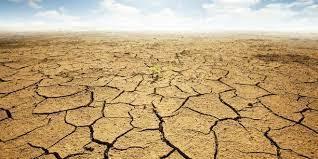 مرگ و میر ناشی از خشکسالی    سلامت در برابر خشکسالی آسیب پذیر است