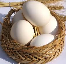 توصیه وزارت بهداشت درباره خرید و نگهداری تخم مرغ در دوران کرونا