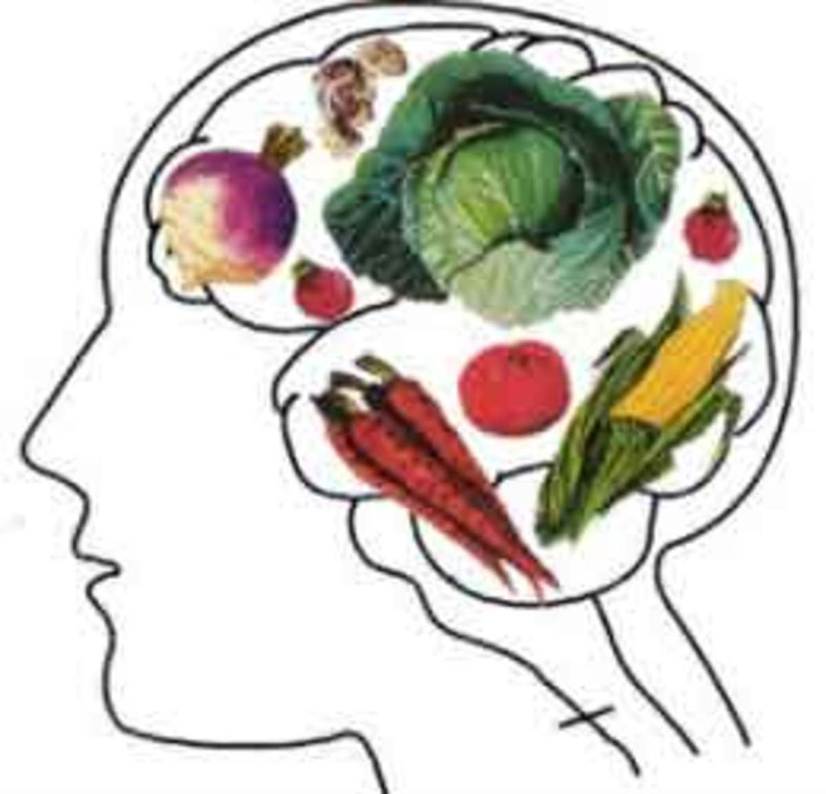 چند ماده غذایی برای جلوگیری از آلزایمر