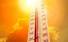 سازمان  هواشناسی   |   در ۴ شهر استان بوشهر دما به آستانه ۴۶ درجه رسید