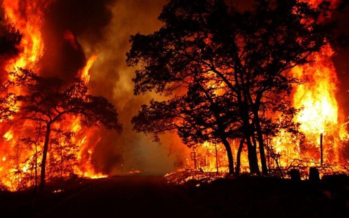 شعلههای آتش جنگلهای دنا را فرا گرفت