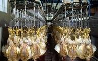 جهاد کشاورزی: مرغ مهرماه ارزان میشود