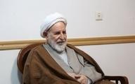 سفارشات آیتالله یزدی به زائران اربعین/پیادهروی اربعین یک حرکت سیاسی است