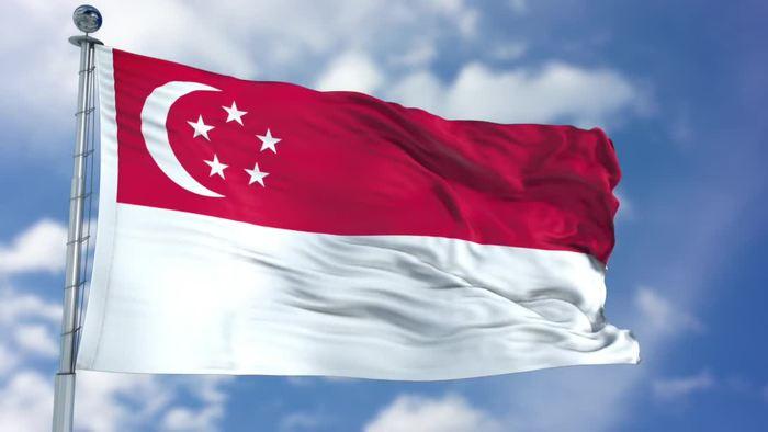 ثبت ضعیف ترین رشد اقتصادی سنگاپور در دهه اخیر