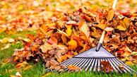 برای پاییز بیباران آماده شوید