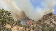 آتش سوزی جنگلهای نارک و خامی گچساران پس از ۷ شبانه روز همچنان ادامه دارد