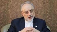 صالحی: در دوران ریاست جمهوری روحانی از منجنیق فلک سنگ فتنه می بارید