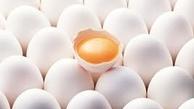 دست دلالان از بازار تخم مرغ کوتاه میشود