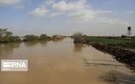هواشناسی  |  سیلابی شدن کارون و مارون و دز