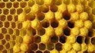 عسل بدون زنبور، شیر بدون گاو