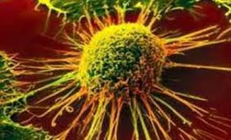 هورمونهای استرس یکی از علل اصلی بیدار شدن تومورهای سرطانی خفته است.