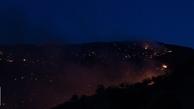آتش سوزی  |  منابع طبیعی و آبخیزداری اندیکا در مراتع و جنگل ها در سه منطقه شعله ور شد