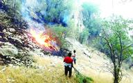 محرومیت محیط زیست   از بالگرد ها برای مهار آتش