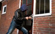 سرقت در پایتخت کشور ۶ درصد کم شد