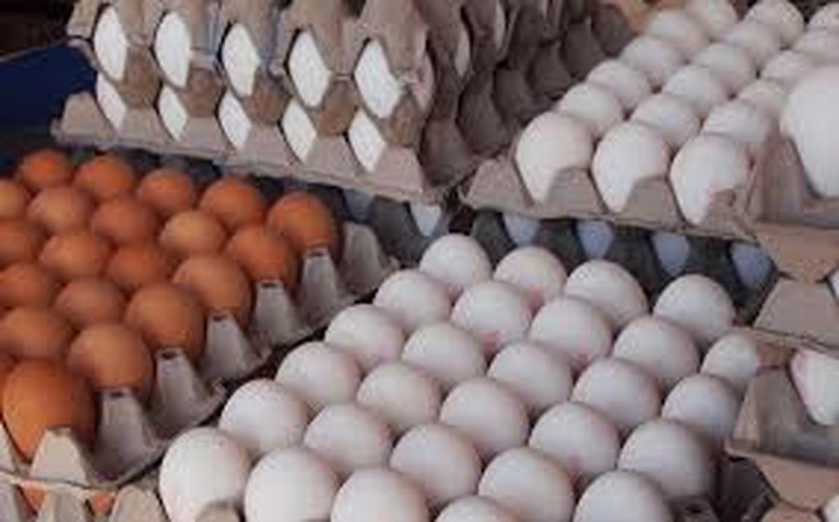 قیمت تخم مرغ  شانه ای ۳۰هزارتومان درسوپرمارکت ها به فروش میرسد