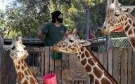 """دیدنیهای امروز؛ از باغ وحش """"اوکلند"""" تا حمله به زندان جلالآباد افغانستان"""