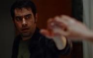 شهاب حسینی     بهترین بازیگر جشنواره اسپانیایی انتخاب شد.
