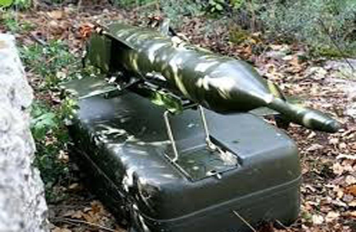 رعد موشک ضدزره ایرانیِ +تصاویر