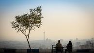فلزات سنگینی که در هوای تهران نفس میکشیم