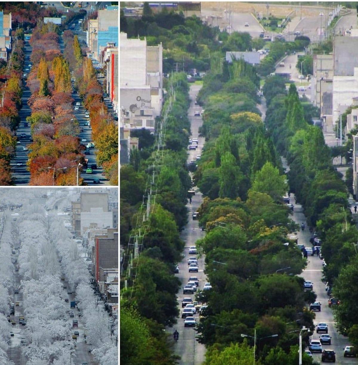 تصویری از بلوار اصلی شهر بیجار در فصل های مختلف سال| خیابانی در شهر بیجار کردستان+ تصویر